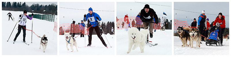 Balto Talvekarikas 2013 võistlusalad. Fotod by Mariin Kaljula