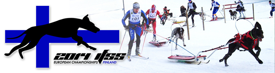 Euroopa meistrivõistlused 2014