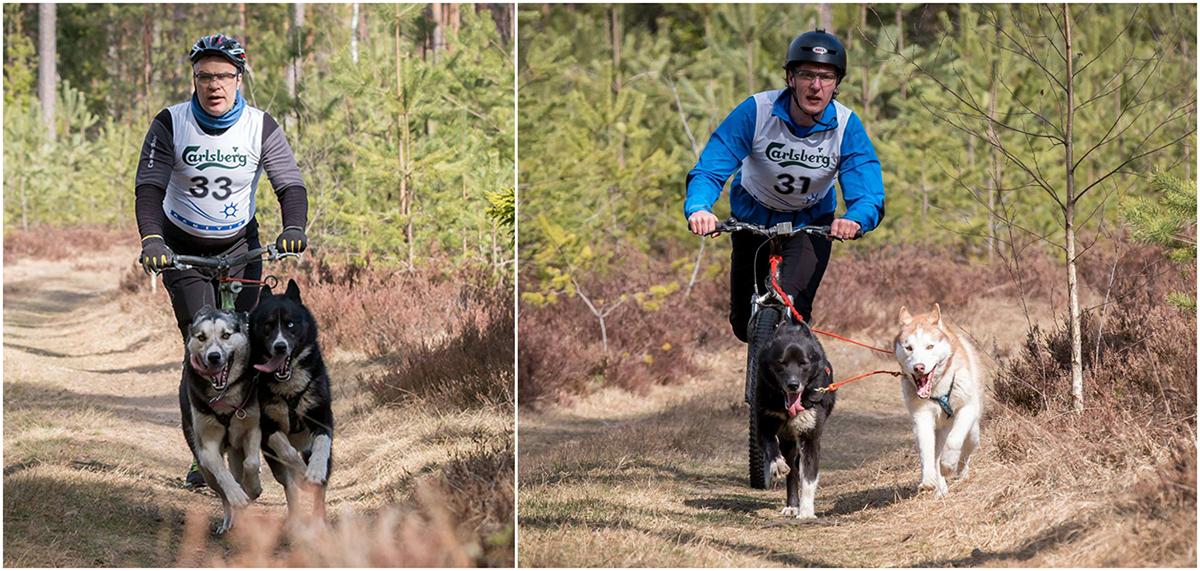 Kelgukoerte Klubi Baltosport - Jaanus ja Uku Racedog Cup 2016