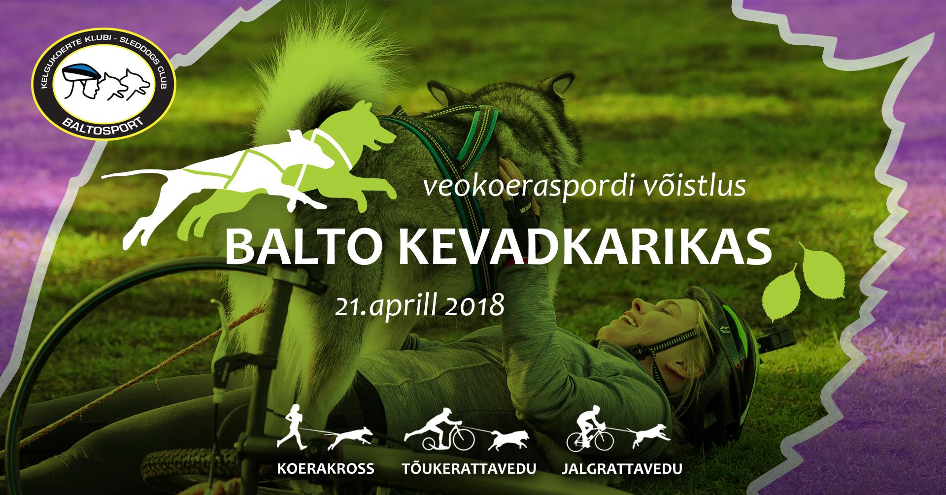 Veokoeraspordi võistlus Balto Kevadkariaks