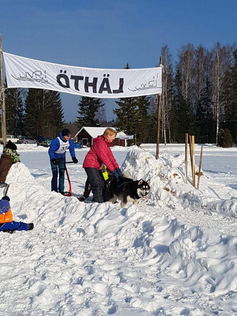 Ohkolan Talvikisa 2018