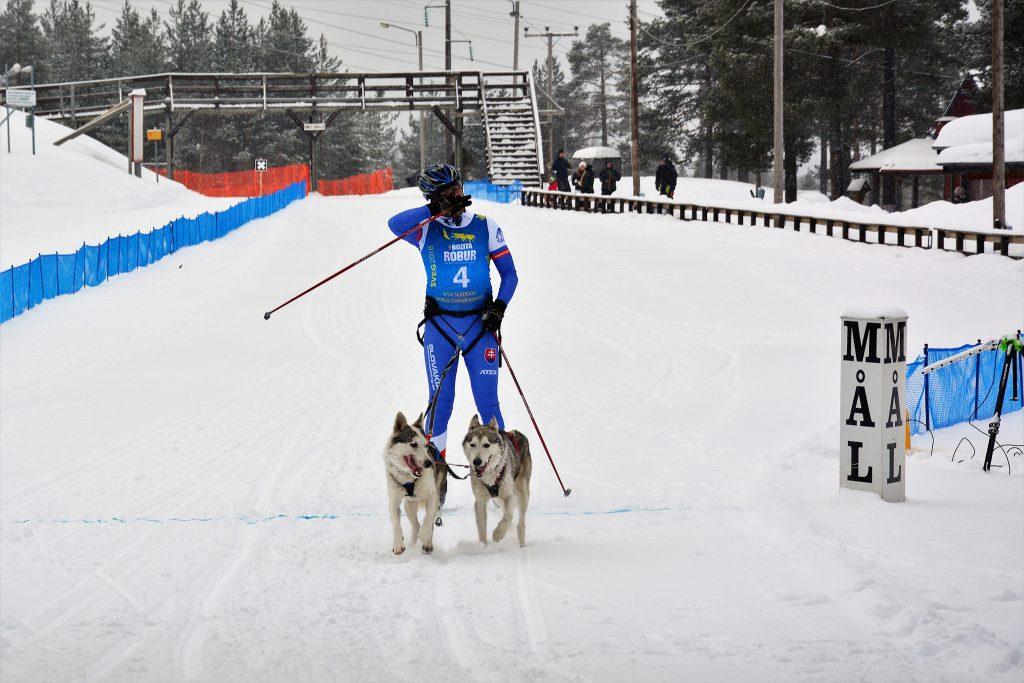 Sveg 2018 veokoeraspordi MM Rootsis