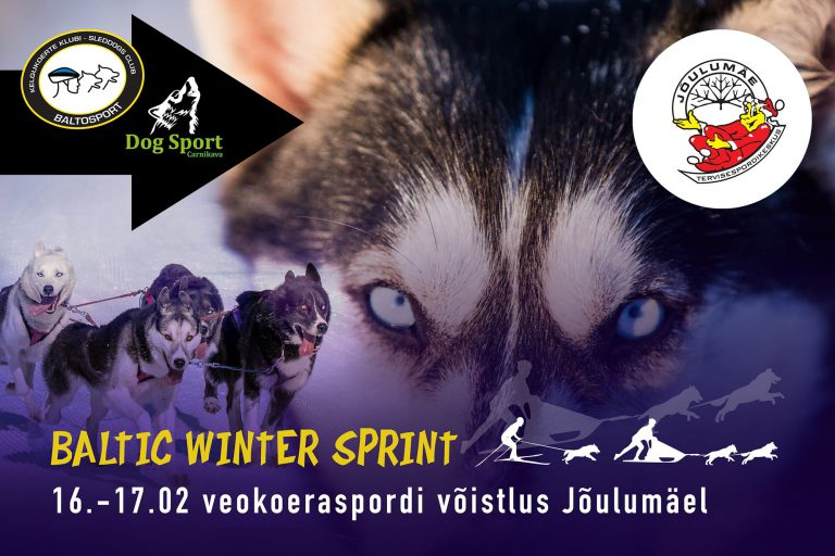 Baltic Winter Sprint 2019 veokoeraspordi võistlus